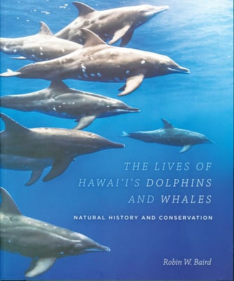 The Lives of Hawaii's Dolphins and Whales