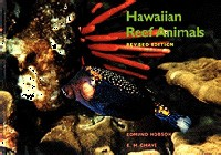 Hawaiian Reef Animals