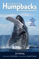 Hawaii's Humpbacks: Unveiling the Mysteries