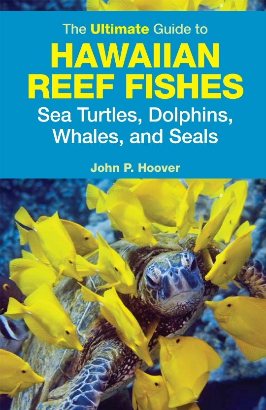 The Ultimate Guide To Hawaiian Reef Fishes Sea Turtles Dolphins Whales And Seals