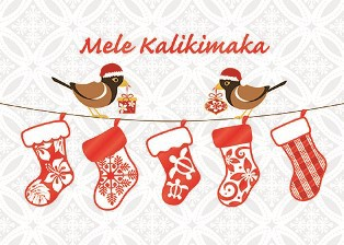 "Boxed 5""x7"" Hawaii Christmas Cards - Mynah Bird Stockings"