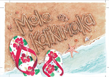 "Boxed 4""x6"" Hawaii Christmas Cards - Sand Writing with Slippers"