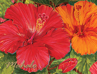 Note Cards - Hibiscus