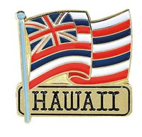 Pin Hawaii Flag
