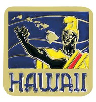 Pin Hawaii State