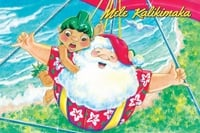 "Boxed 4""x6"" Hawaii Christmas Cards - Santa Hang Glide"